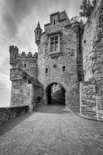 Schloss Dhaun-Haupteingang-sw von Erhard Hess