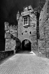 Schloss Dhaun-Haupteingang-dark von Erhard Hess