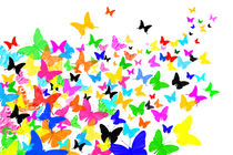Schmetterlingsschwarm von darlya
