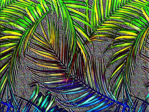 Palm-leaf-art