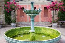 grüner Brunnen von kolkisfan