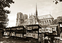 Notre-Dame Cathedral behind the bouquinistes stalls  von Perry  van Munster