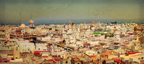 Old center of Cadiz by Perry  van Munster