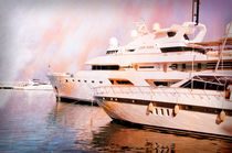 Yachts in the Luxury marina of Puerto Banus by Perry  van Munster