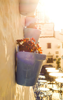 Blue flower pot in sunset Mijas von Perry  van Munster