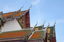 Buddhist Temple, Bangkok Thailand by Perry  van Munster