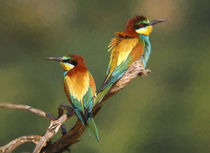 Bee-eaters von Perry  van Munster