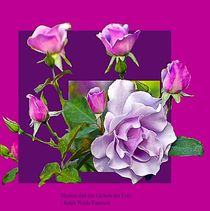 Der Zauber der Blüten by foryou
