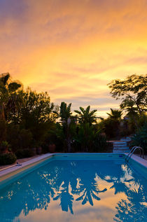 Pool at sunset by Perry  van Munster