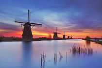 Traditional windmills at sunrise, Kinderdijk, The Netherlands von Sara Winter