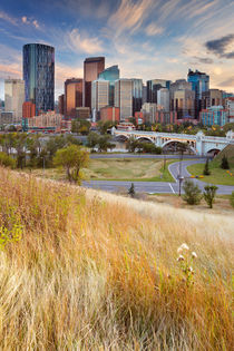 Skyline of Calgary, Alberta, Canada at sunset by Sara Winter