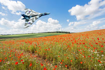 Avro Vulcan B2 bomber over a field of red poppies by Graham Prentice
