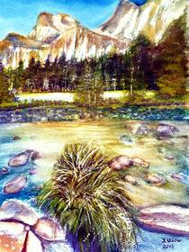 Josemite-Tal ( USA ) by Irina Usova