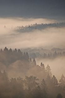 Morgennebel über Wallgau... 10 by loewenherz-artwork