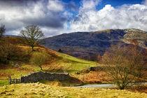 Cumbrian Landscape by Vicki Field