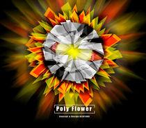 Poly Flower  von biju