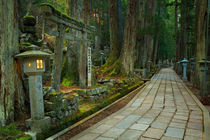 Path through Koyasan Okunoin cemetery, Wakayama Prefecture, Japan von Sara Winter