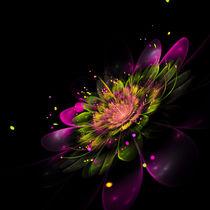 Freudenblüte von Viktor Peschel