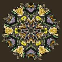 Mandala Flora Fauna von Thomas  Bode