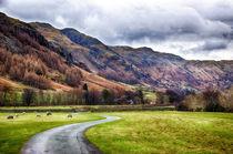 Langdale Valley by Vicki Field