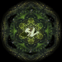 Wald-Mandala by Thomas  Bode