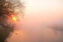Sonnenaufgang im Nebel 3 von Bernhard Kaiser