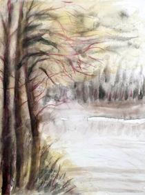 Landschaft am Wasser von Irina Usova