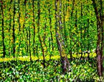 Wald und Unterholz von Jan Siebert