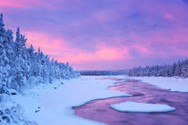 Sunrise over river rapids in a winter landscape, Finnish Lapland von Sara Winter
