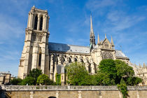 Notre-Dame Cathedral Paris France von Perry  van Munster
