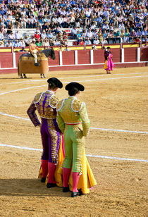 During a bullfight, Banderilleros waiting for the picador by Perry  van Munster
