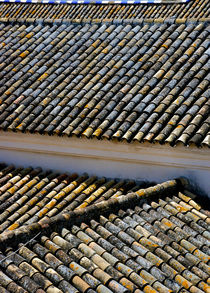 Tiled Roof by Perry  van Munster