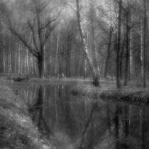 Landscape with a pond von Alexander Kurlovich