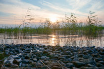 Quiet Lake  von Thomas Matzl