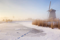 Dutch windmills in a foggy winter landscape in the morning by Sara Winter