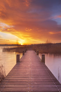 Boardwalk over water at sunrise, near Amsterdam The Netherlands by Sara Winter
