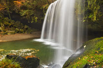 Nabegataki Falls in Japan in autumn by Sara Winter