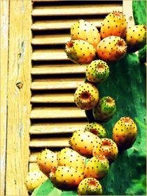 ~ Cactus and Wood ~ von Sandra  Vollmann