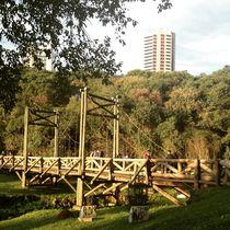 Natureza e desenvolvimento by Eny  Lisboa
