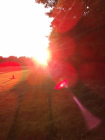 Sun is dawning... von dietraumweberin