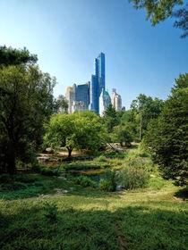 Central Park NY von Daniel Heine
