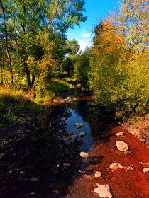 Flusslandschaft am Ende des Sommers von Patrick Jobst