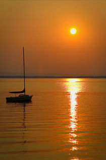 Sailing at Sunset by Amber D Hathaway Photography
