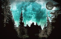 Foriegn-skies-2