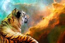 Tiger and Nebula by Erika Kaisersot