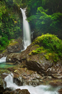 Kawazu waterfall trail, Izu Peninsula, Japan by Sara Winter