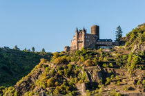 Burg Katz mit Patersberg 87 von Erhard Hess