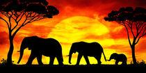 Elefanten im Sonnenuntergang von darlya