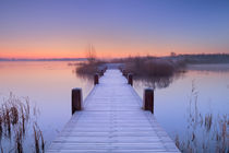 Boardwalk on a lake at dawn in winter, The Netherlands by Sara Winter