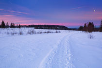 The Hautes Fagnes in Belgium in winter at sunrise by Sara Winter
